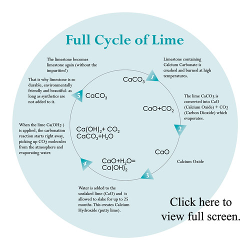 Dimensions-Cycle-of-Lime-Graphic-thumb
