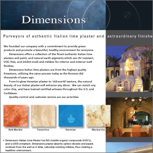 Dimensions Plaster Flyer